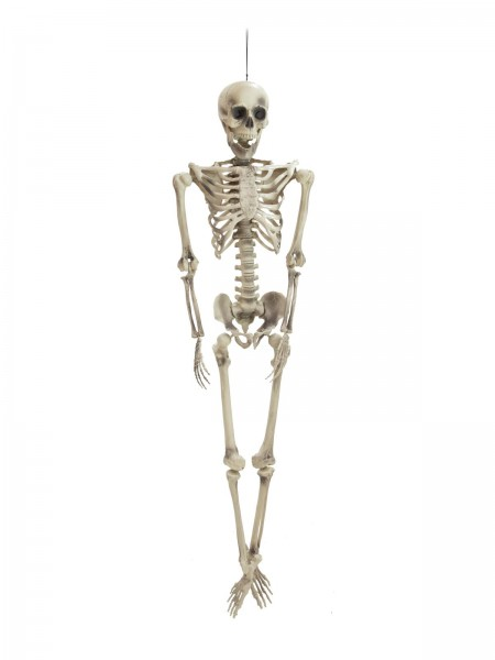 Grosses Skelett Zum Hangen Oder Legen Halloween Deko 163cm Hoch Discokugel Shop