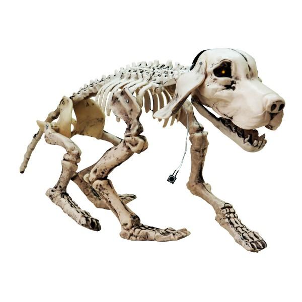Hundeskelett mit Animation, leuchtende Augen und Geräusche - 71x40x25cm - Halloween Dekoration