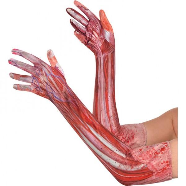 Halloween Kostüm Armstulpen Muskeln & Knochen - lange Handschuhe für Erwachsene - ca. 30cm